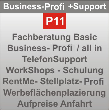 P-11-Business-Profi